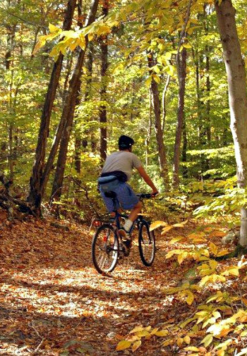 A man in jean shorts rides a bike on a path through the woods in fall.