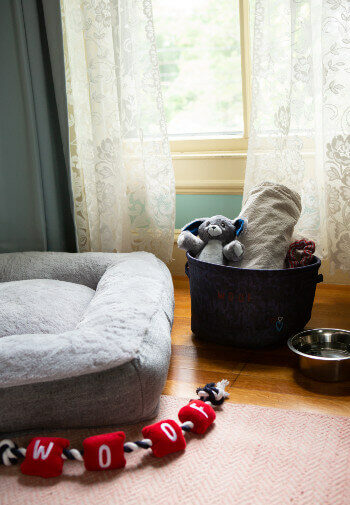 dog amenities including bed, bucket of toys and bowls., toy made of material spelling woof